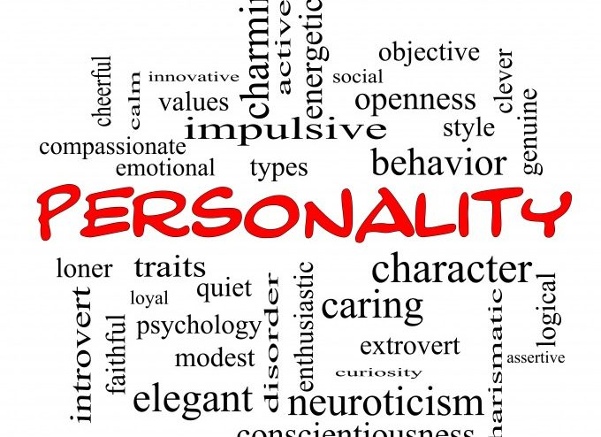 how personality assessment can help you be a better leader horizon